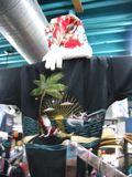 Kauai Christmas 1489