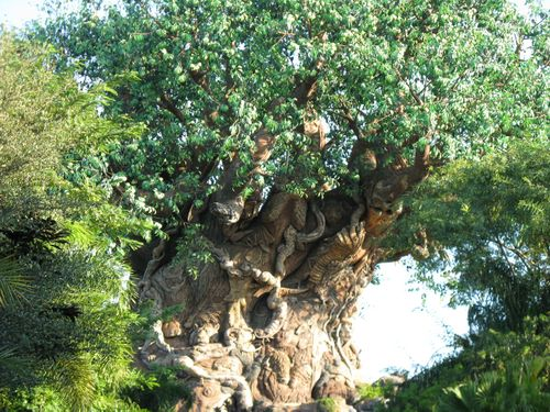 AnimalKingdom208