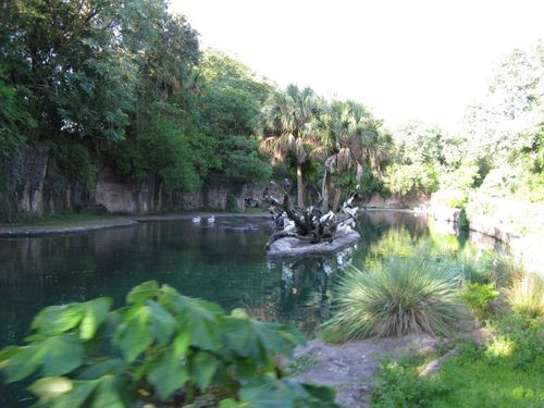 AnimalKingdom220