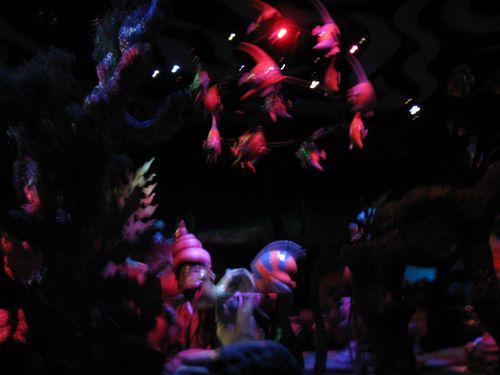 Disneyland 462