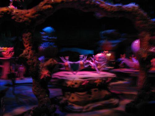 Disneyland 463