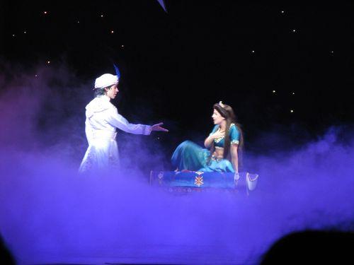 Disneyland 521