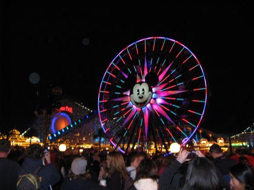 Disneyland 531