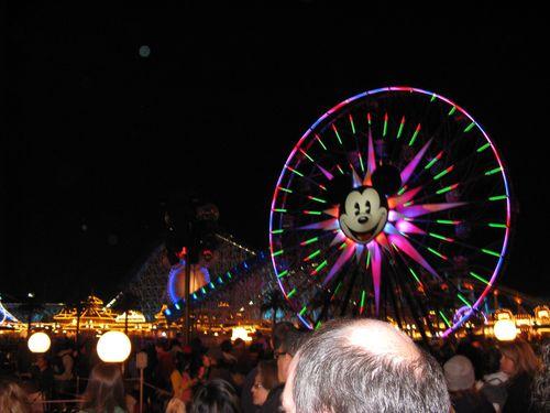 Disneyland 532
