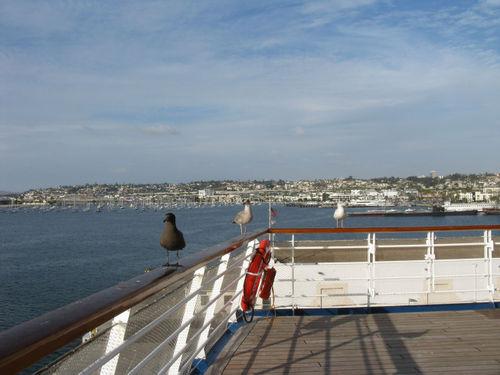 Cruise 032