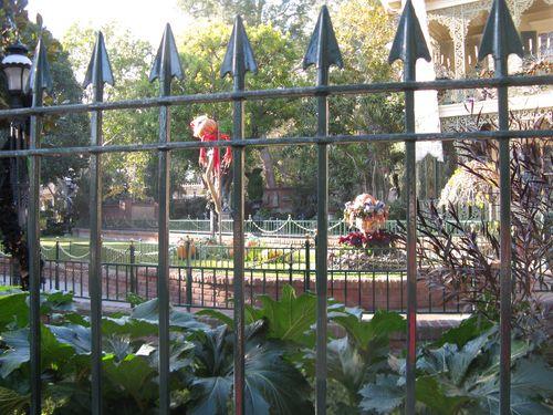 Disneyland 010